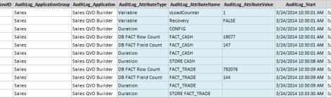 Example Audit Log